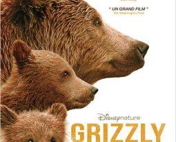 Terminé – Grizzly en salles le 5 novembre – Gagnez des places de cinéma #DisneyNature