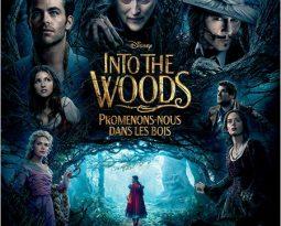 Critique : Into The Woods, Promenons-nous dans les bois  #DisneySocialClub