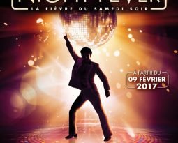 Saturday Night Fever, le spectacle musical