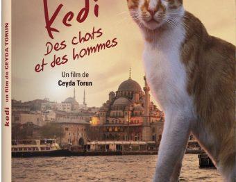 Terminé – Gagnez des DVD du film documentaire KEDI – Des chats et des hommes !
