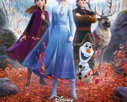 Critique Film – La Reine des Neiges 2 avec les voix avec Emmylou Homs, Charlotte Hervieux, Dany Boon